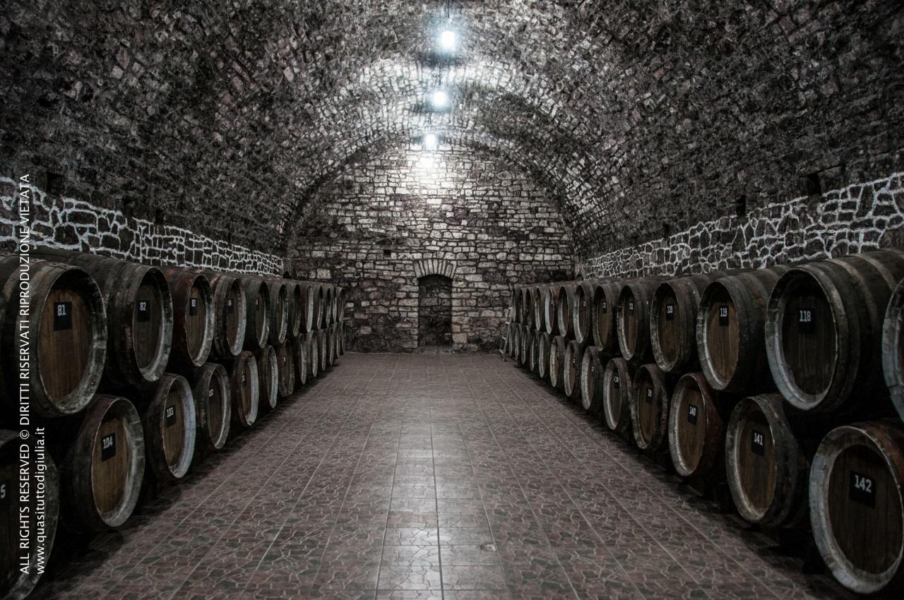 La cantina in uno stabilimento di produzione di vino a Helenendorf