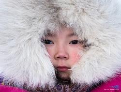 Yamal, Urali Polari